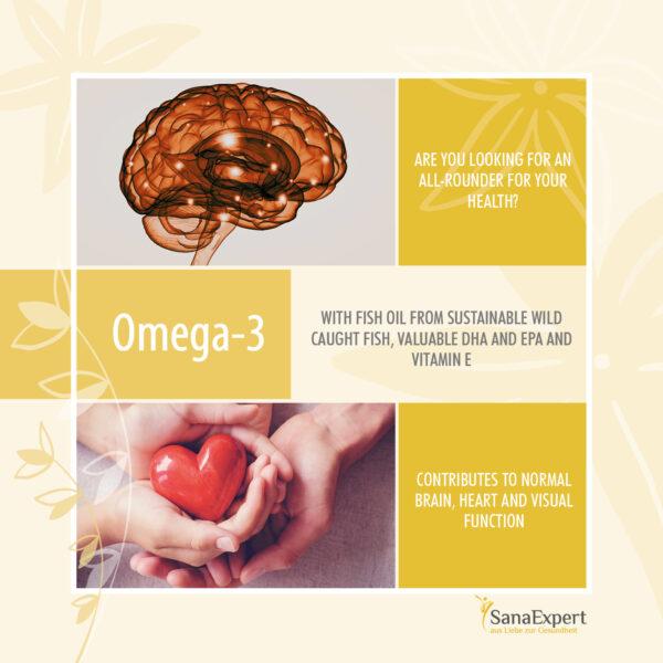 Sanaexpert Omega 3