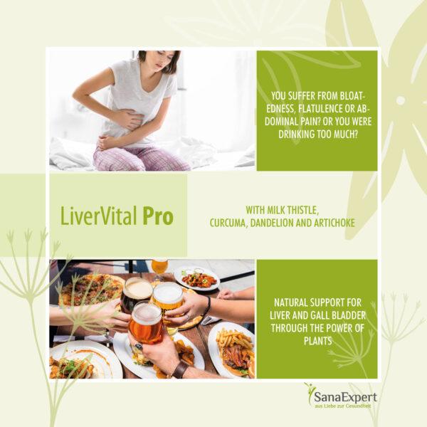 SanaExpert LiverVital Pro